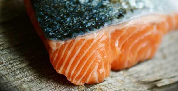 trancio di filetto di salmone