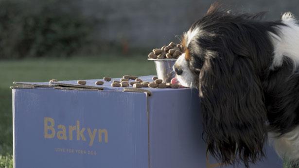 cibo personalizzato cani