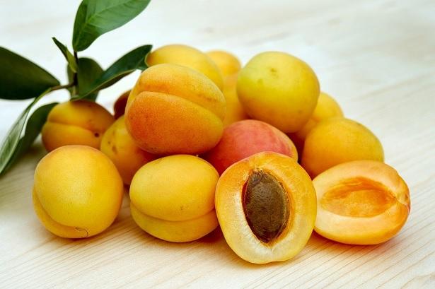 varieta-albicocca