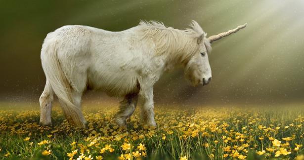 animali mitologici unicorno