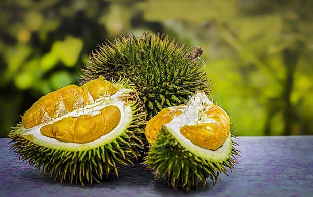 durian polpa