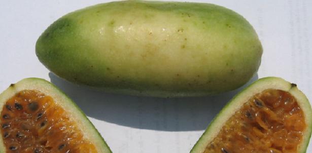 Curuba frutto