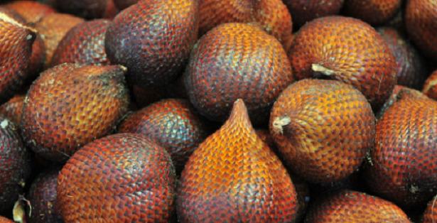 salak frutti