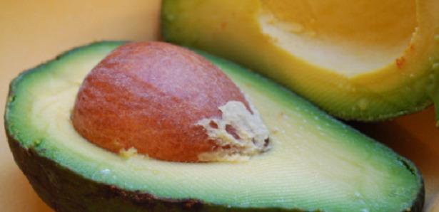 avocado polpa