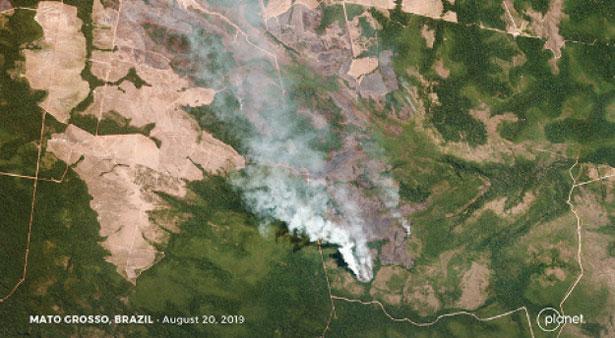 deforestazione foto aerea